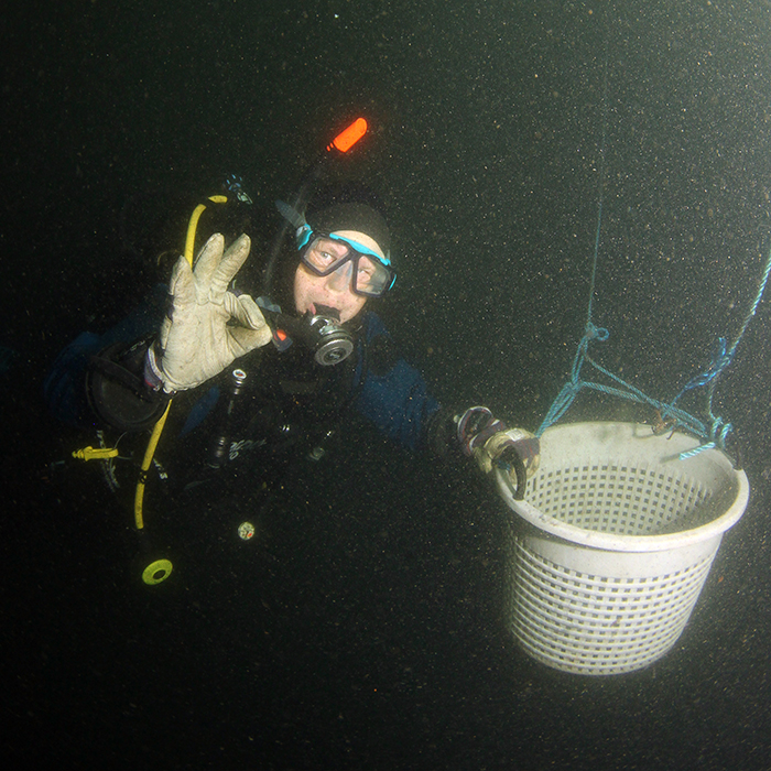 Städning under ytan