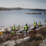 Ungdomar i gula västar går och plockar skräp på klippor vid havet. Foto: Petter Trens