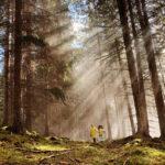Kundvagnen ungdomar i skogen