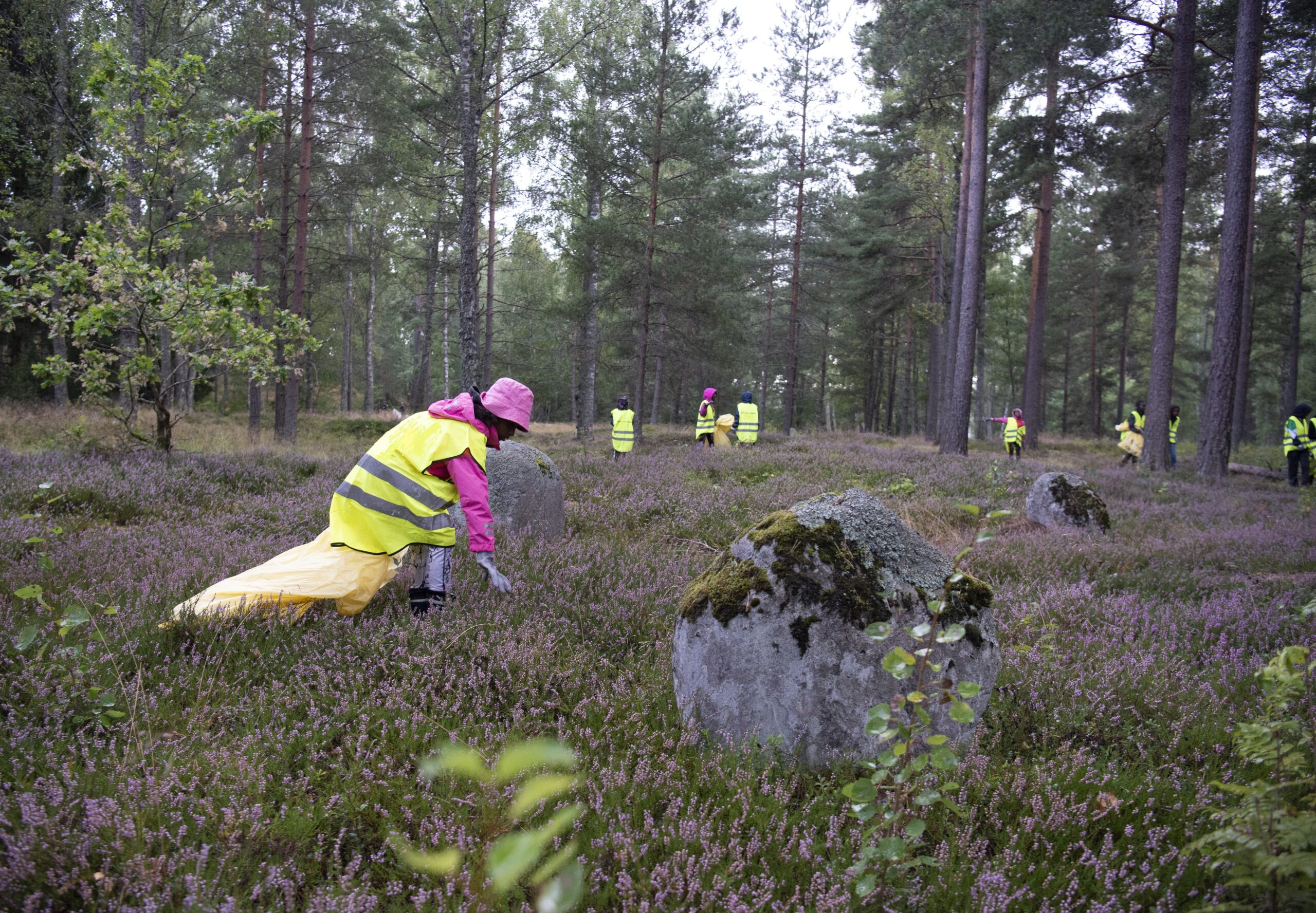 Plocka skräp i naturen – en självklarhet för idrottsungdomar i Värnamo och Gnosjö